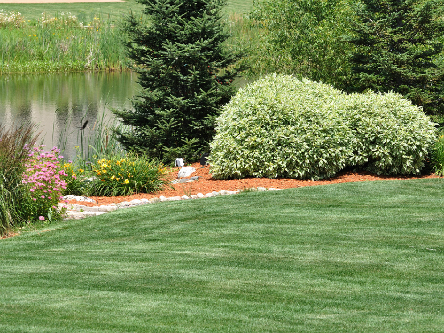 Keep Your Yard in Tiptop Shape