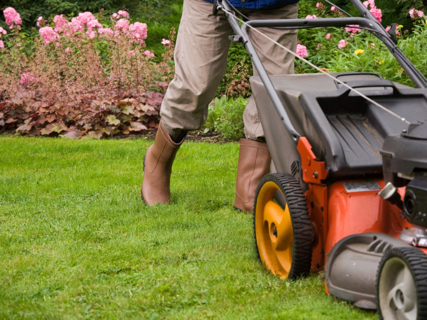 Start Taking Better Care of Your Lawn