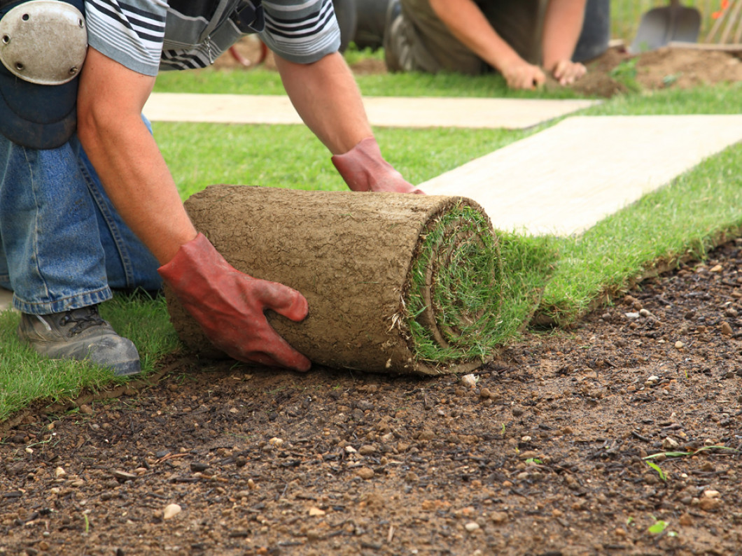 Add New Life to Your Landscape